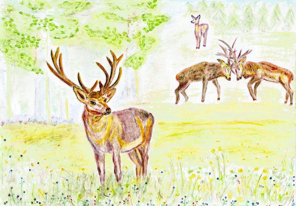 Paralelní pohádka Jelen - Tíha koruny, autor Martina Dobešová