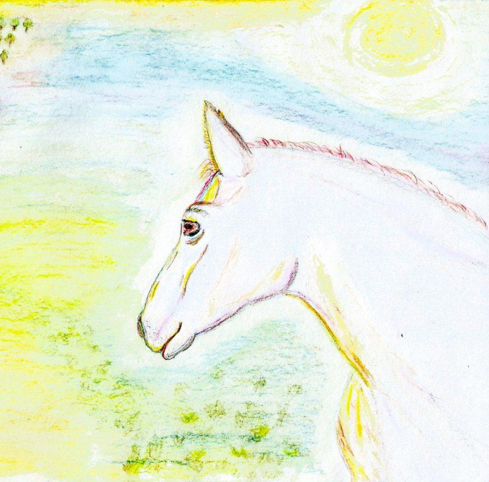 Zlatá pohádka Bělouš, autor Martina Dobešová